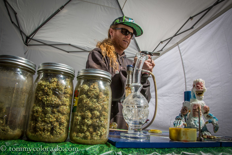 cannabiscup_tomfricke_160917-2206.jpg