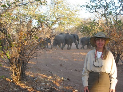 2003 African Safari