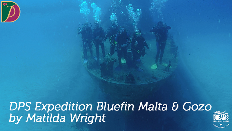 Expedition Bluefin: Malta & Gozo DPS 2019 by Matilda Wright