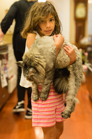 Lila and her Maine Coon Cats