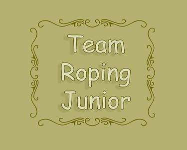 Junior Team Roping