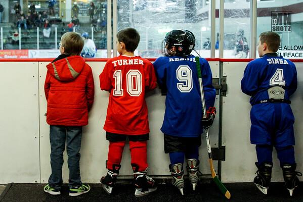 2014-2015 Wildcat Hockey - Boys