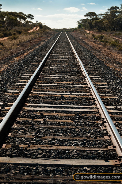 In the mallee region of NW Victoria, this railway line sees heavy traffic shipping wheat and other crops around the country.