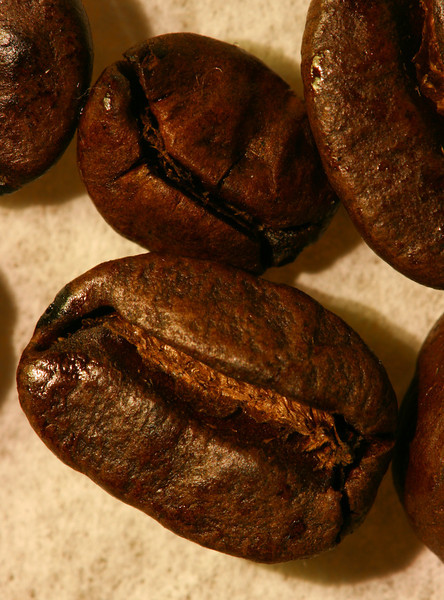 Coffee Bean Macros are hard to get.  This was my favorite out of over 2 dozen takes.