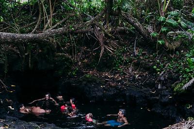 Puna Hawaii // Keiko Forest
