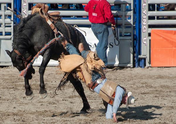 San Juan Capo Rodeo Aug 11