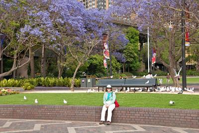Sydney, Nov 2012