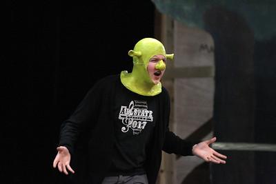 Shrek the Musical at St. Charles North High School
