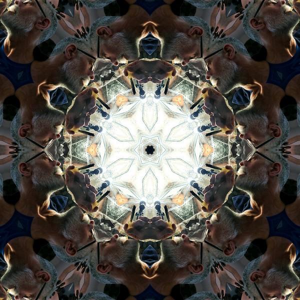 6959_mirror8.jpg