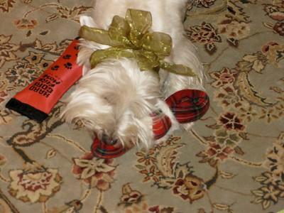 2007F Christmas