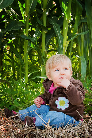 Fall portrait session out at EZ Orchards just outside Salem, Oregon