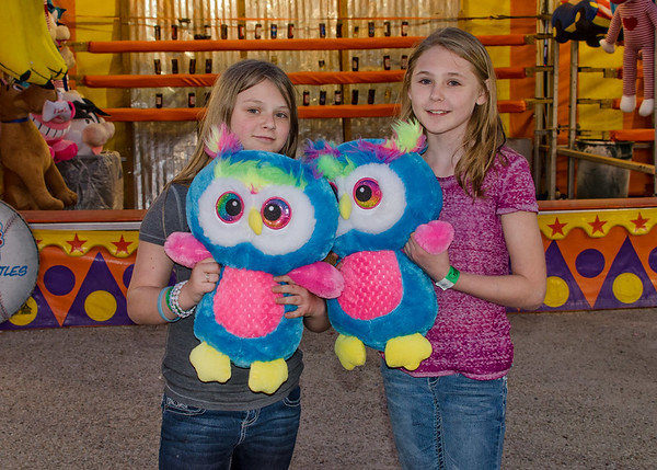 Visitors to the Fair