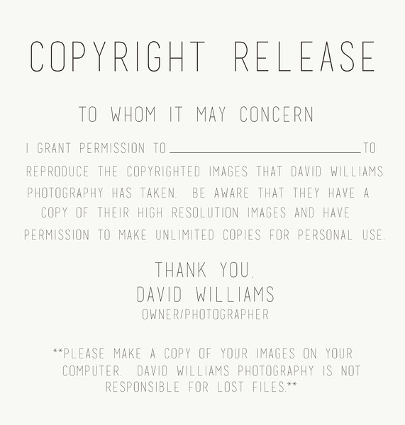copyright release form.jpg