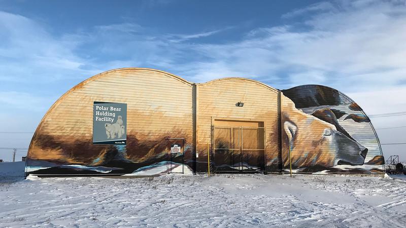 Polar Bear Jail.jpg