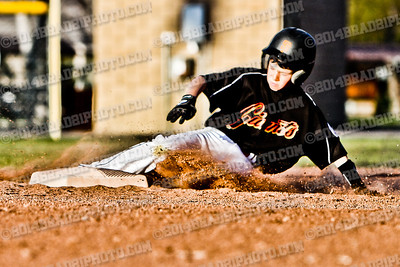 CVLL Baseball 2014