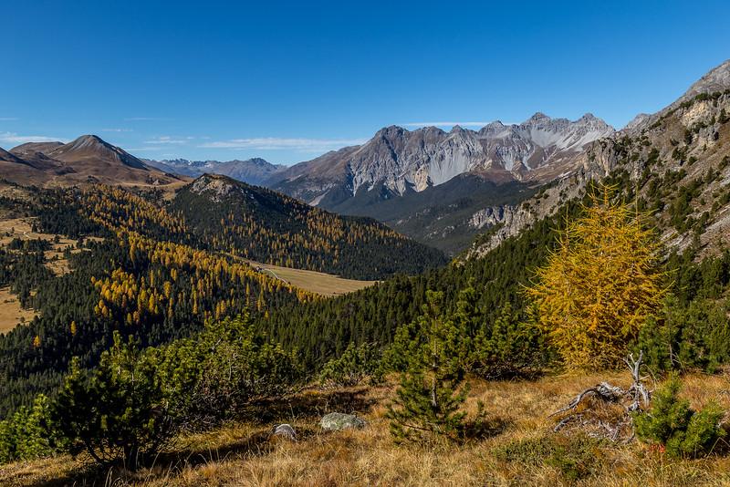 Auf dem Weg vom Ofenpass zur Alp Mora: Blick Richtung «Piz dal Fuorn»