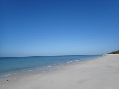 Life's a Beach Barrier Island Shelling Tour