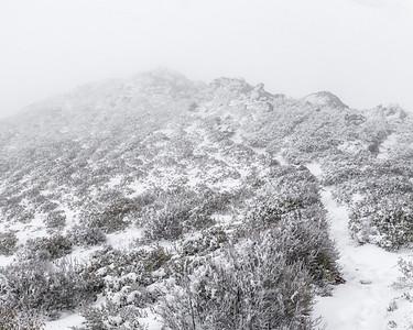 03-12 Whiteout on Garnett Peak