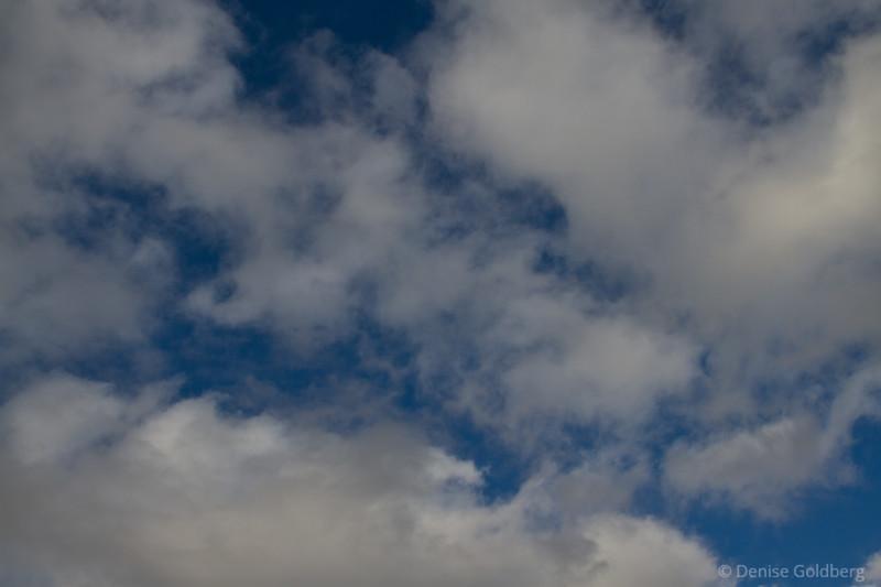 201011_7D_3602L.jpg