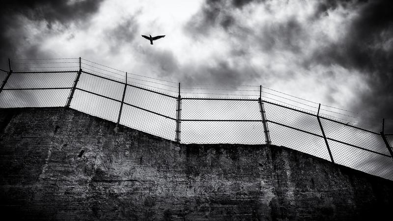 Jagged Alcatraz-.jpg