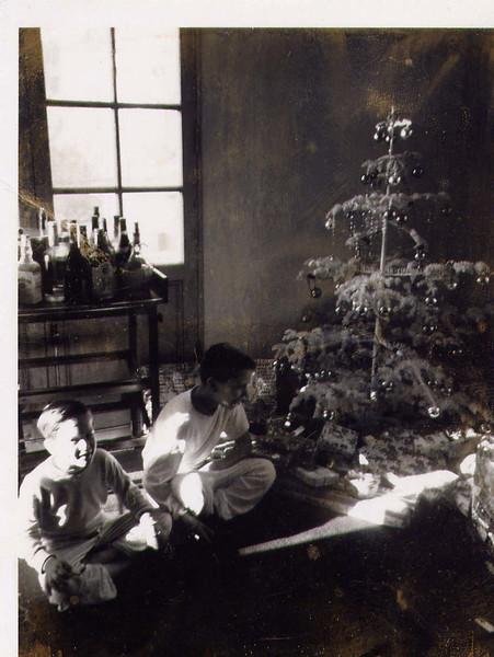 Christmas tree Tony & Peter.jpg