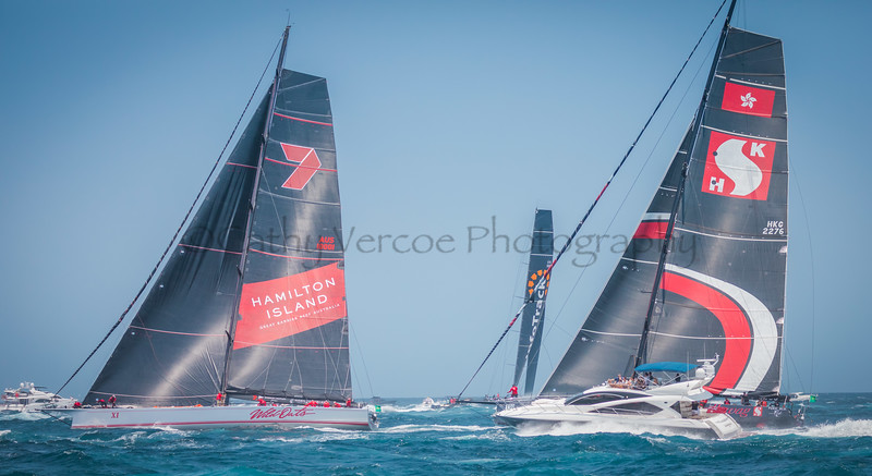 Infotrack leads Wild Oats XI and Scallywag