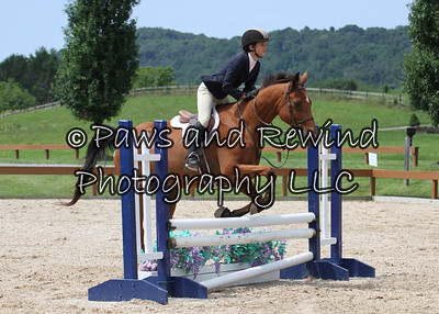 Hunter Ring: Pre Children's Horse O/F