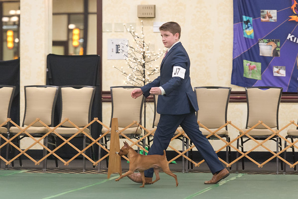 Junior Showmanship