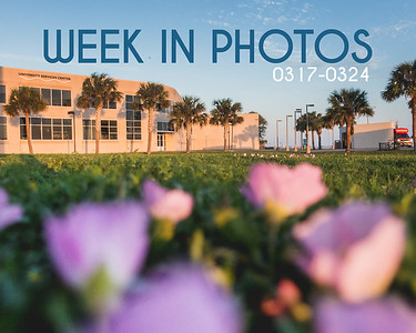 Week In Photos 0317-0324
