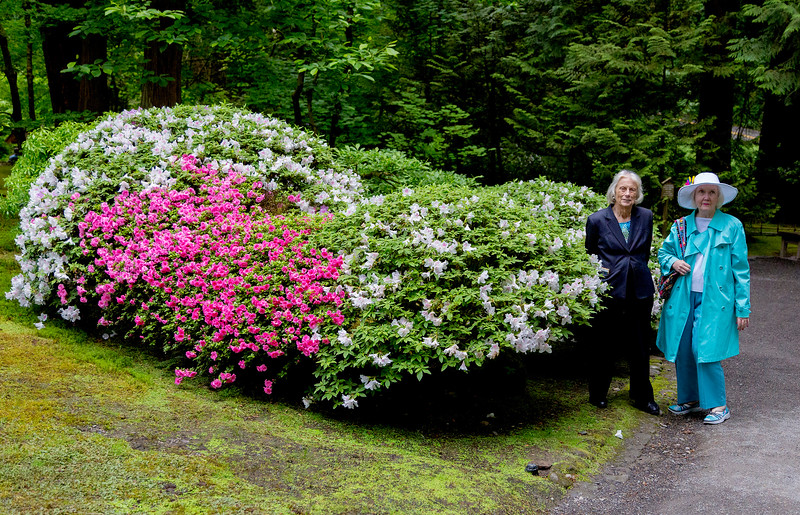 Carol and Carolyn by some lovely shrubbery