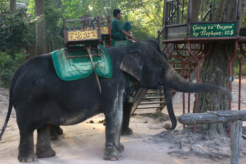 Cambodia - Siem Reap - Day 1 015.jpg