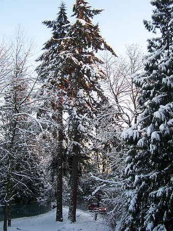 Winter Scenes: Surrey, Burnaby, North Vancouver