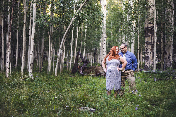 Sarah and Ayman | San Francisco Peaks Engagement