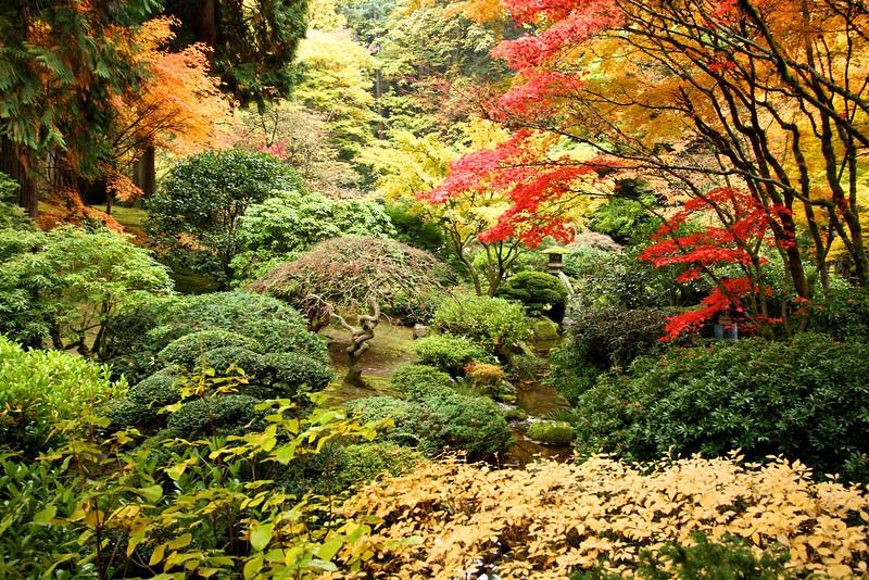 Portland Japanese Garden  11-11-11  3568.jpg