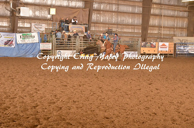 Team Roping Long Go