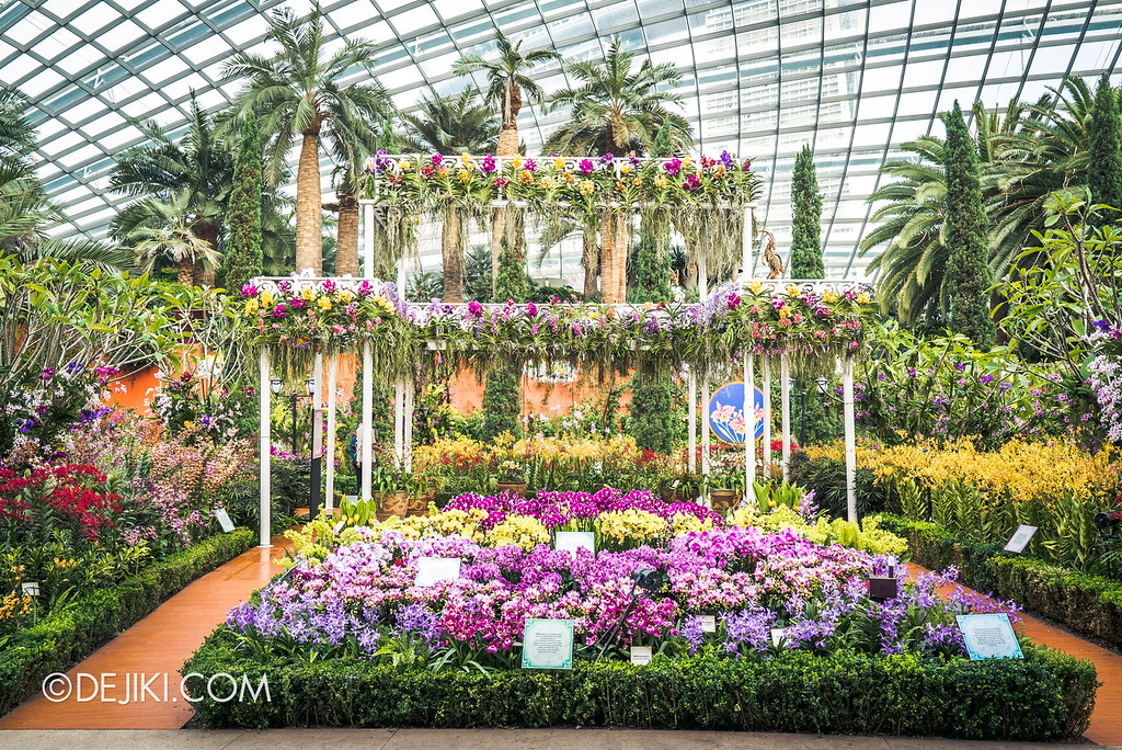 Gardens by the Bay - Orchid Extravaganza 2018 / Flower Field straight on