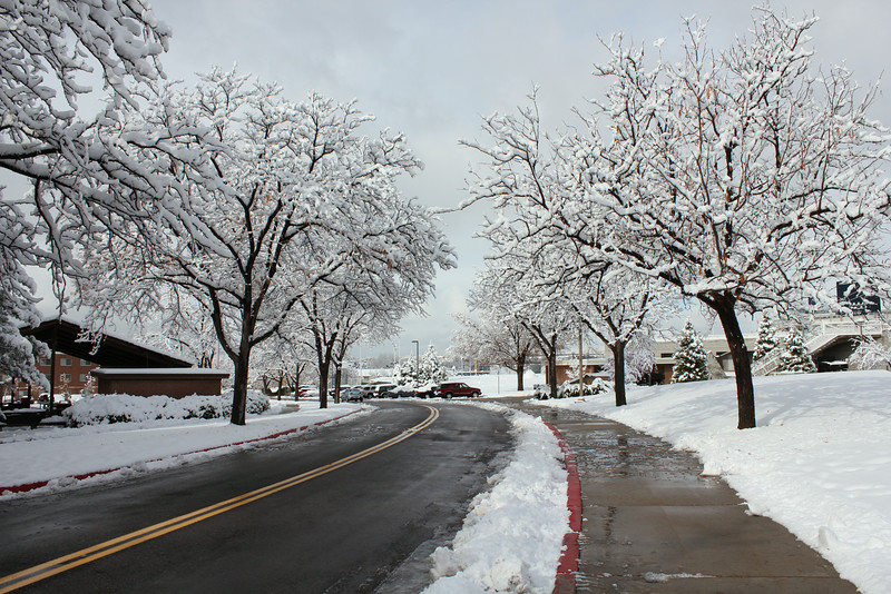 Snowy_Morning_11_10_2012_3309.JPG