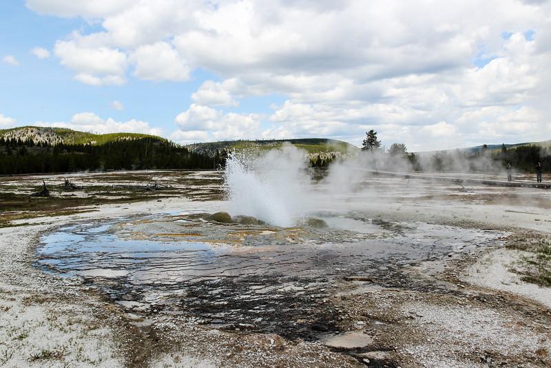 Jewel Geyser - Yellowstone National Park