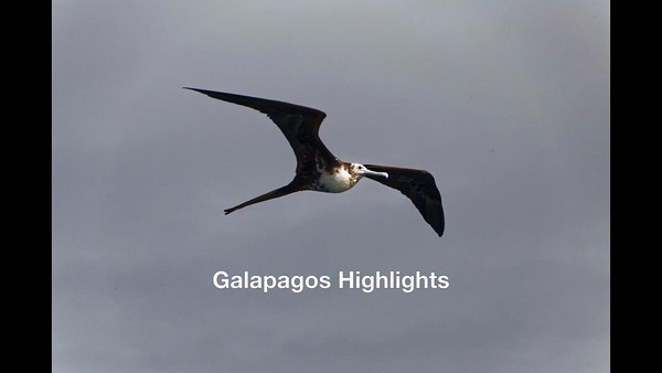 Galapagos Machu Picchu Slideshow