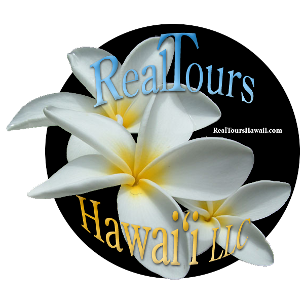 About RealTours Hawaii