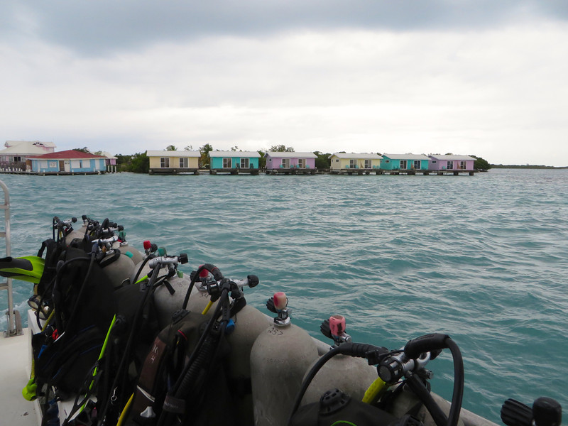 2nd port - Scuba diving in Belize!!