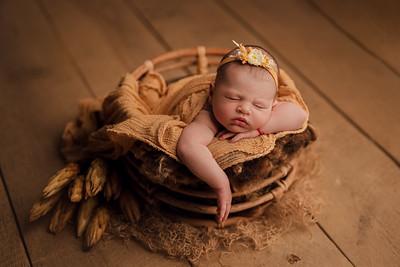 Sara • Newborn