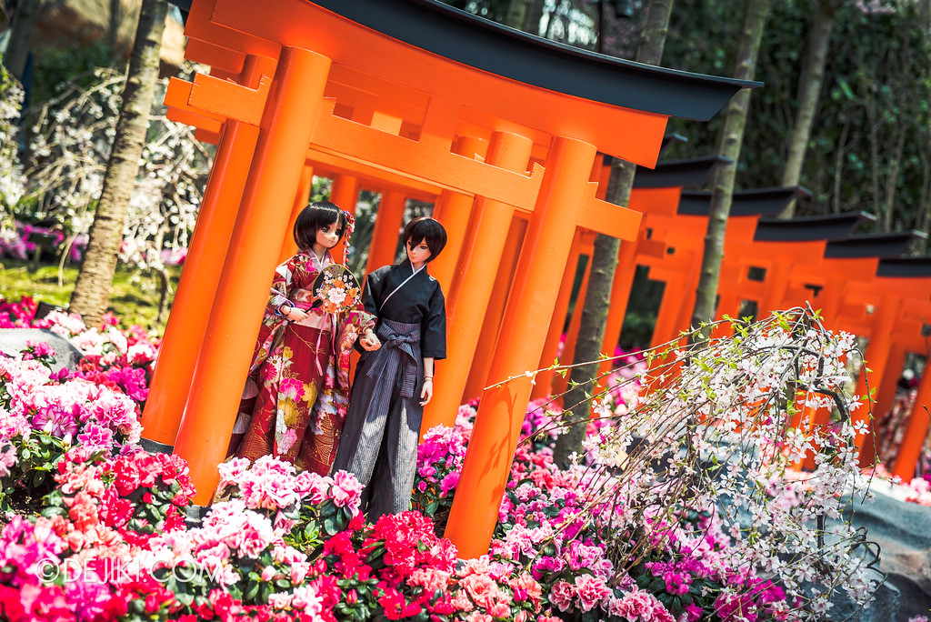 Gardens by the Bay - Sakura Matsuri 2018 floral display - flower field dolls couple tori gate