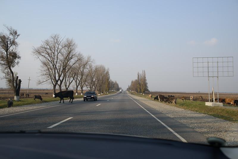 Russian highways
