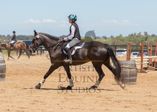 Rider 339
