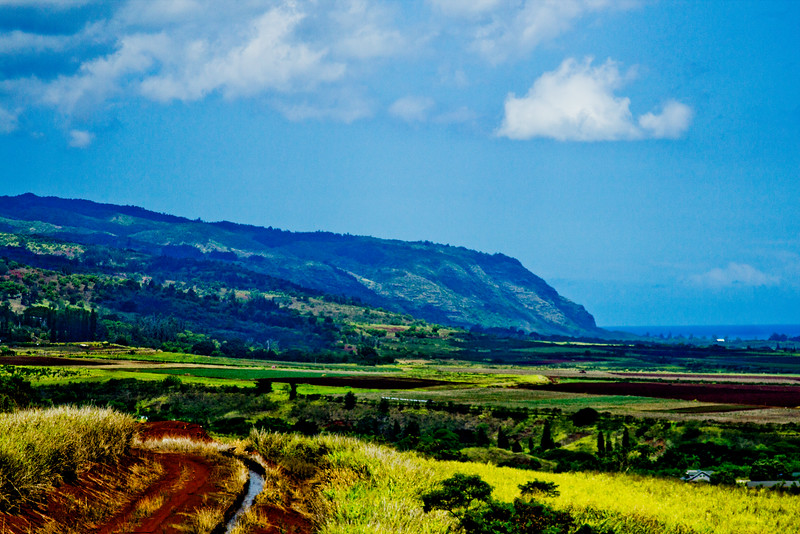 Journey into Oahu Photograph 104
