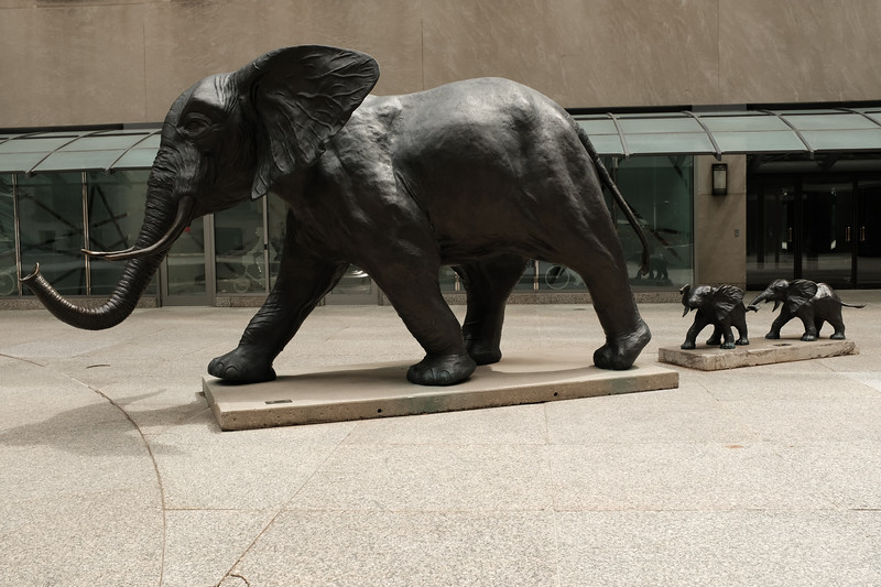 """""""Tembo, Mother of Elephants"""" by Derrick S. Hudson"""