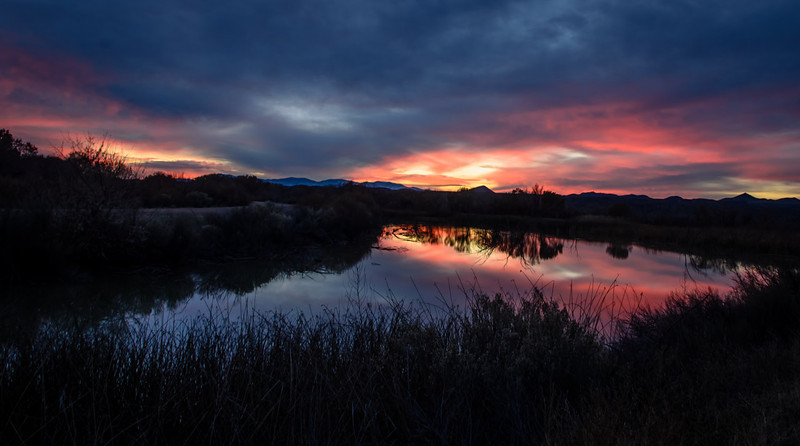 Sunset at Bosque del Apache.jpg