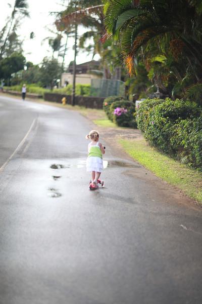 Kauai_D4_AM 039.jpg