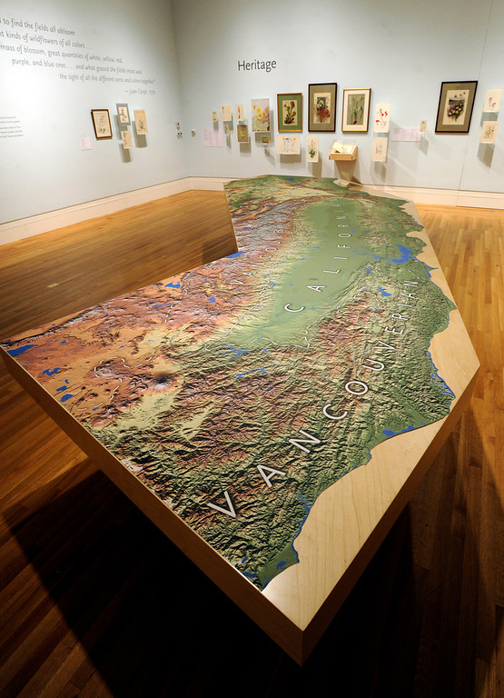 ". A giant topographical map of California is seen in te ""Heritage\"" secton of the gallery. \""When they were wild,\"" is the Huntington Library\'s new Wildflower exhibition which kicks off a month of talks, workshops and wildflower sales. San Marino, CA 3/8/2013(John McCoy/Staff Photographer)"